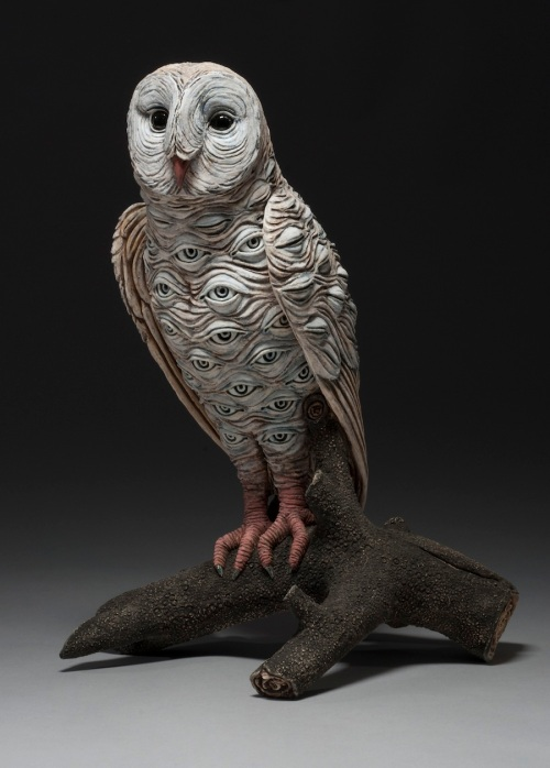 24.-Owl-Awareness-Series-web